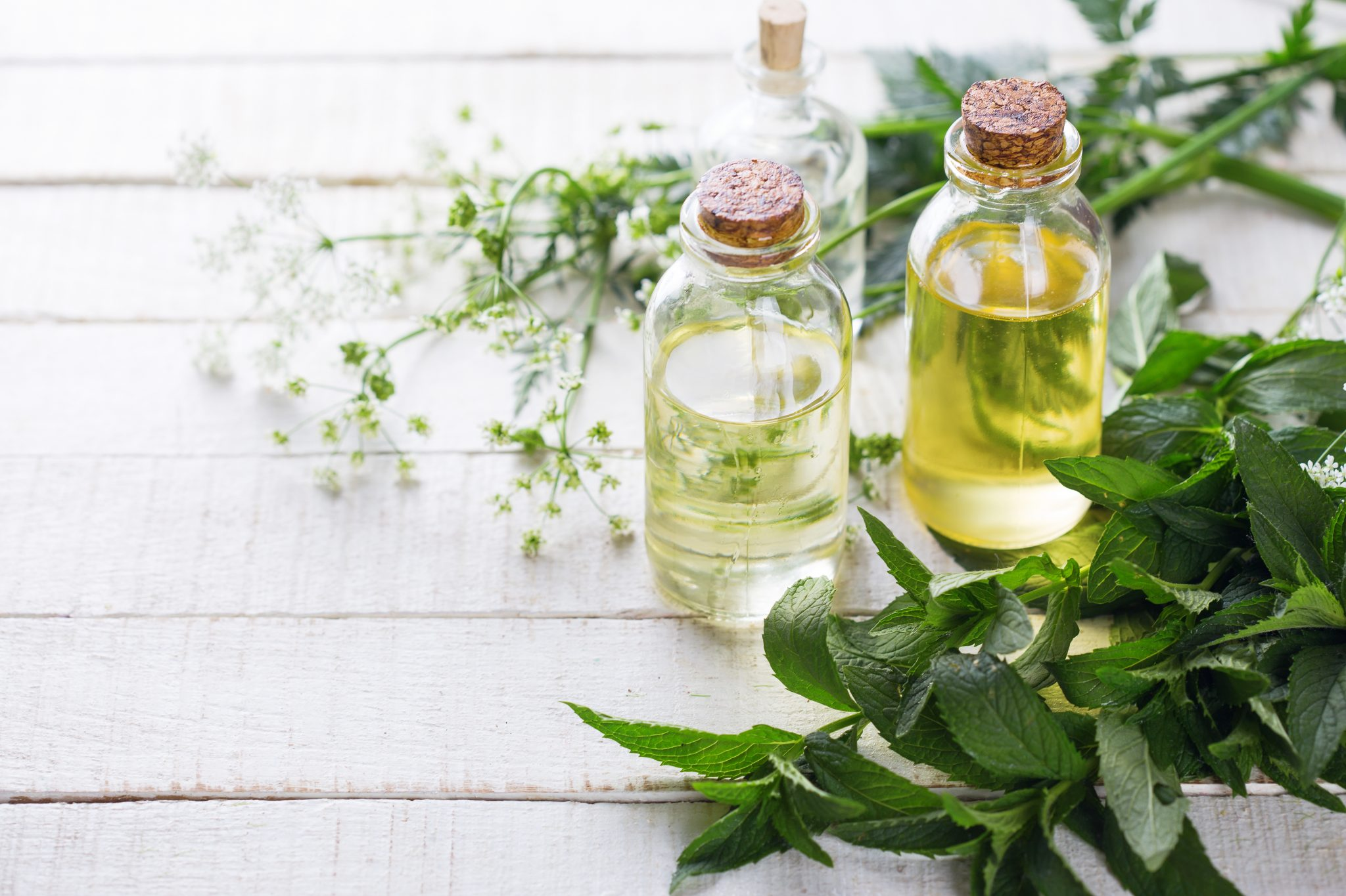 Essential Oils for Losing Weight
