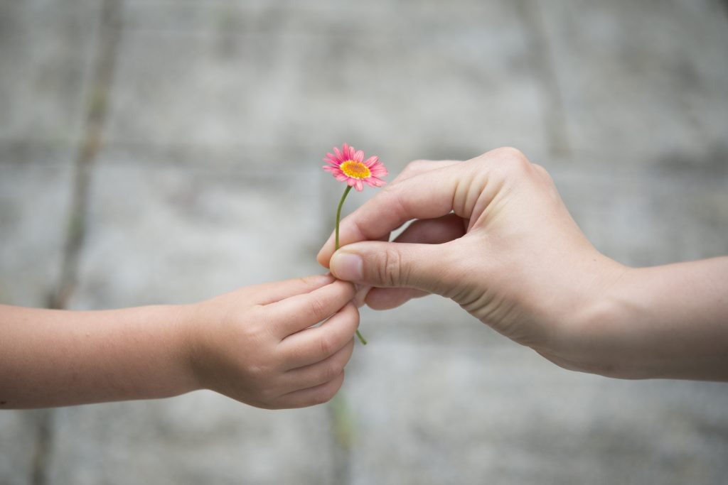Girl handling flower to mom
