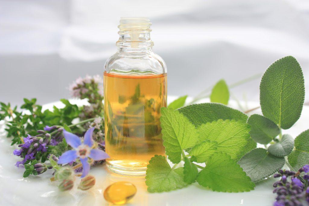 Borage Oil for Hormone Balance
